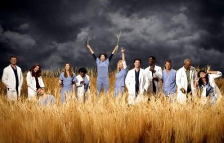 Greys Anatomy Season Dvd Grey'S Anatomy
