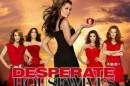 Desperate Housewives Season 7 Episode 14 Flashback Reencontro de «Desperate Housewives» em «Devious Maids»