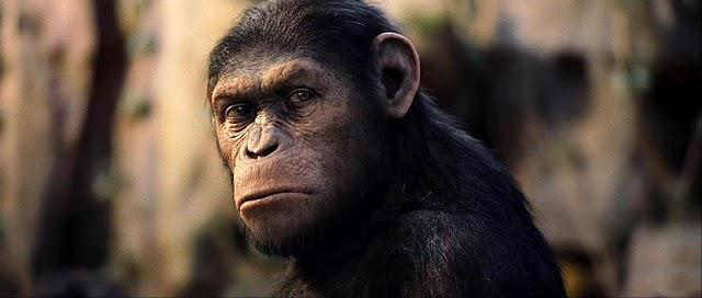 Rise Of The Planet Of The Apes 101 Rise Of The Planet Of The Apes