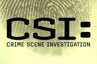 csi season 10