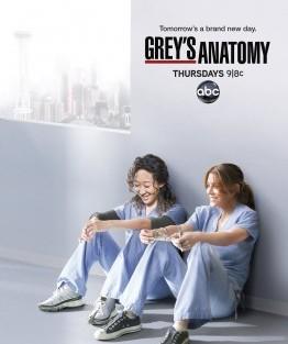 greys anatomy anatomia lui grey sezonul 8 season 8 poster