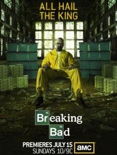 breaking bad season 5 poster 450x663
