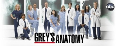Greys Anatomy Season 8