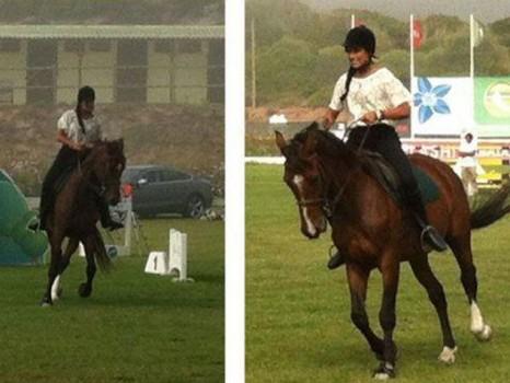 Rita Pereira cavalo