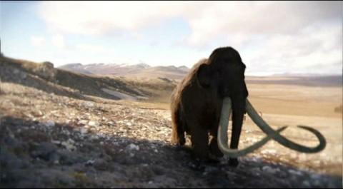 bbc-terra-mamute-lanoso