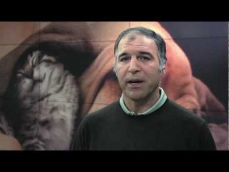 Rodrigo Guedes De Carvalho Campanha Animais Rodrigo Guedes De Carvalho Faz Campanha A Favor Dos Animais