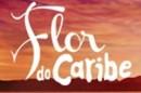 Flor Do Caribe Tv Globo Já Apresentou A Novela «Flor Do Caribe» À Imprensa