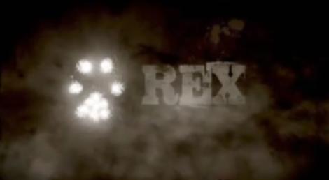 Rex O Cao Policia Sic Define A Faixa Horária De «Rex, O Cão Polícia»