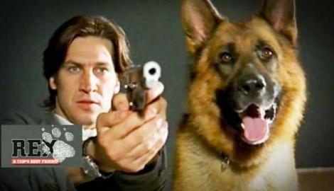 Rex The Movie.jpg@Protect200362600543@Crop640360C Sic Transmite Nova Série De «Rex, O Cão Polícia»