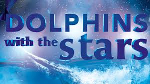 Dolphins With The Stars «Golfinhos Com As Estrelas»: Bárbara Guimarães Destaca Importância De Formação Inicial