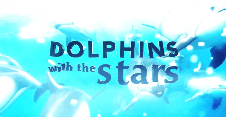 Golfinos «Golfinhos Com As Estrelas»: Participantes Já Tinham Contratos Assinados