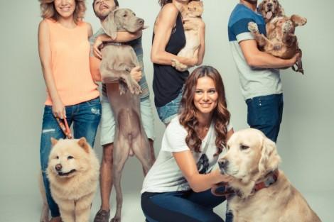 Lisb On Casa Dos Animais De Lisboa Famosos Juntos Em Campanha De Responsabilidade Social [Com Fotos]