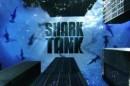 Shark1 Ex- Ceo Da Vodafone Portugal Apontado Ao «Shark Tank» Português