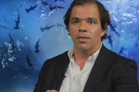 2014 11 13 Joao Rafael 2 «Shark Tank»: Tubarão João Rafael Koehler Esclarece Polémica