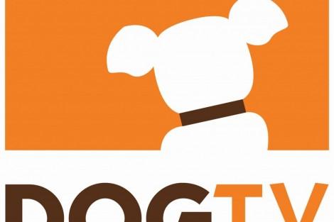 Dogtv Logo Exclusivo Nos: Dogtv Em Sinal Aberto