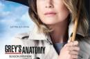 Greys Anatomy 12 Temporada Abc Renova 14 Das Suas Séries
