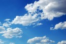 Cloud 07 «De Olho Na Quinta»: Nova Rúbrica Com O Apoio Tvi E Endemol [Com Vídeo]