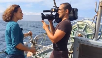 reporter tv TVI exibe investigação de dois anos sobre as alterações climáticas