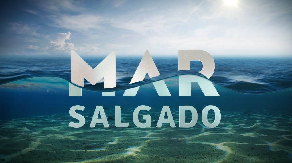 Mar Salgado Autora De «Mar Salgado» Pode Regressar À Sic Em 2016