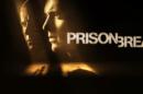 prison break «Prison Break»: Sara descobre que Michael está vivo. Veja o vídeo.