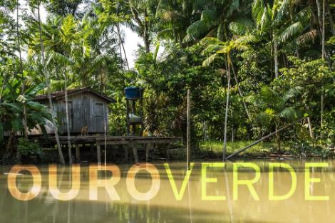 Ouro Verde «Ouro Verde»: Gravações No Brasil Arrancam Em Novembro