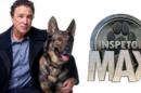 Inspector «Inspector Max»: Telespectadores Criticam Estratégia Da Tvi