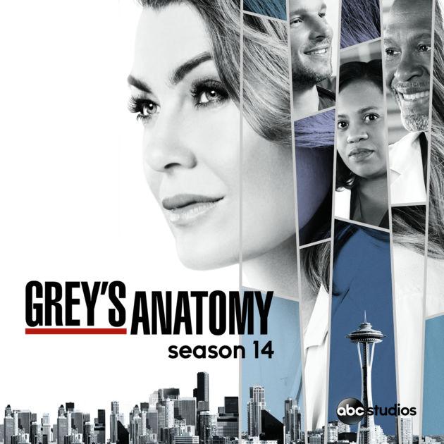 Anatomia De Grey «Anatomia De Grey» Regressa À Fox Life E Tem Episódio Solidário