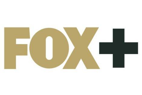 Fox Fox+ Chegou À Nowo