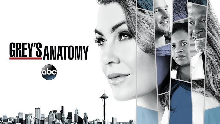 Greysanatomy «Anatomia De Grey» Vai Ter 15ª Temporada