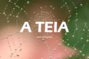 A Teia Novela Tvi Nova Novela Da Tvi «A Teia» Reune Grupo De Luxo