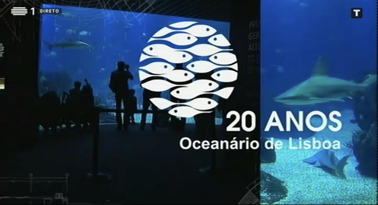 2F37A0B8 2E7A 4748 B0D1 79885E2538Bf Rtp Celebra 20º Aniversário Do Oceanário De Lisboa