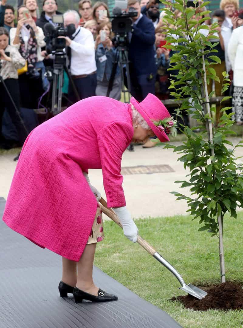 Naom 5D25B75920Bb6 Isabel Ii Recusa Ajuda Para Plantar Árvore: &Quot;Continuo Perfeitamente Capaz&Quot;