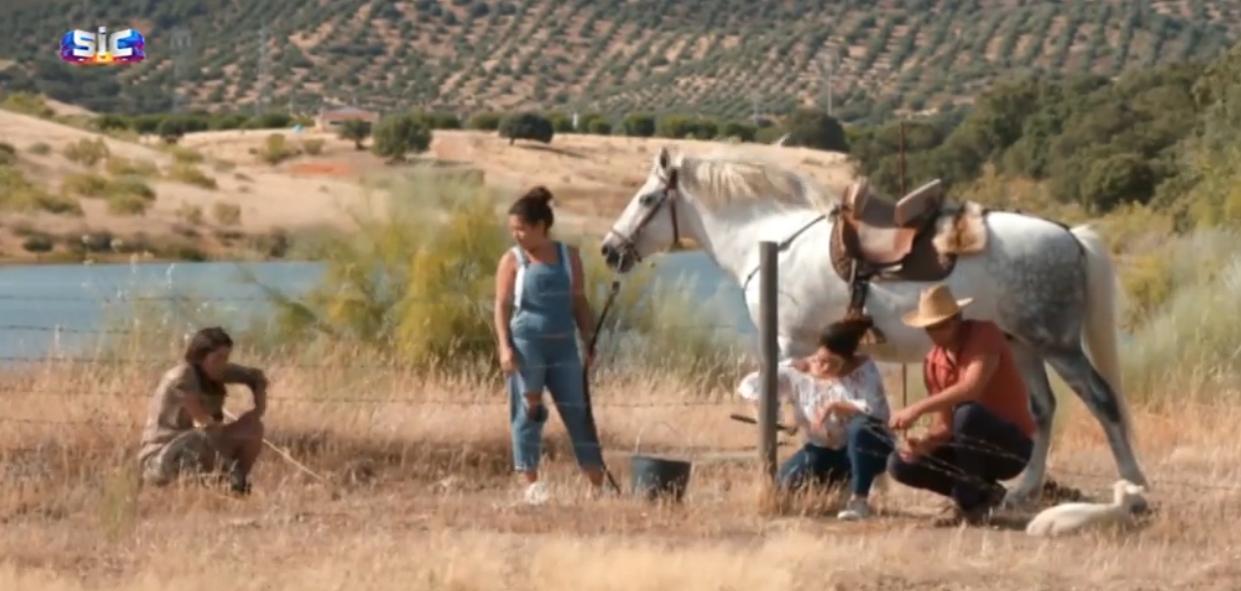 Quem Quer Namorar Com O Agricultor Costas Voltadas! Rita E Soraia Já Não Se Suportam Em 'Quem Quer Namorar Com O Agricultor?'