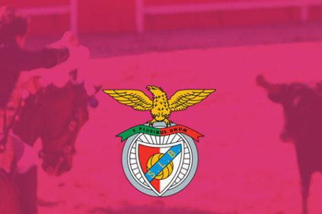 42630072 243348562975024 7260371091096726828 N E1566577026943 Fim Da Parceria! Benfica Deixa De Apoiar Touradas No Campo Pequeno