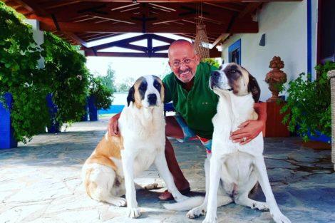 Manuel Luis Goucha Dia Mundial Do Animal: Famosos Portugueses Comemoram A Data