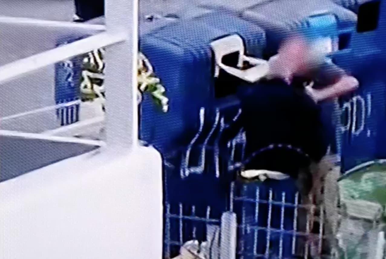 """Bebe Lixo Lisboa Mãe Que Deitou Bebé Ao Lixo: """"Eu Não Quero Esta Vida"""""""