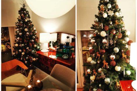 Manuel Marques Decorção Natal Tudo Pronto! Figuras Públicas Montam A Árvore De Natal E Mostram Aos Fãs