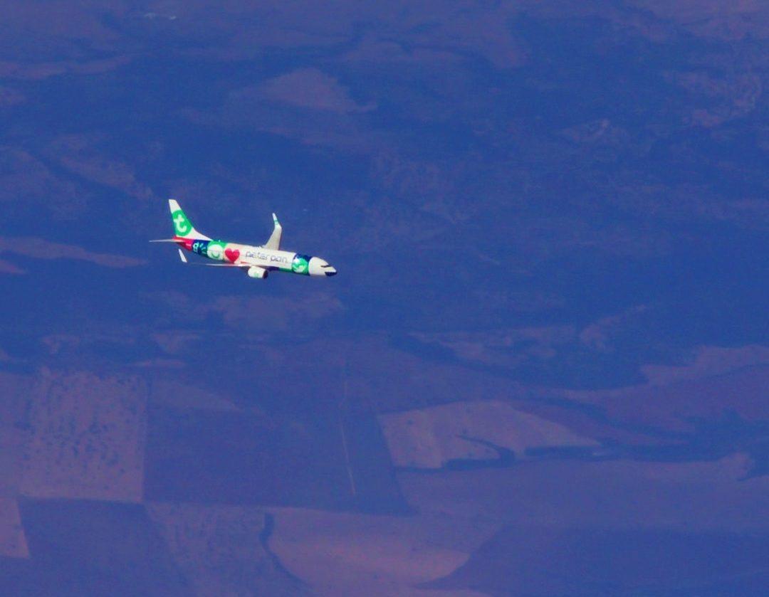Transavia 54247842 640363993074199 747861689373067389 N E1578226541985 Piloto Desmaia Durante Voo Porto-Funchal E Co-Piloto Obrigado A Regressar Ao Porto