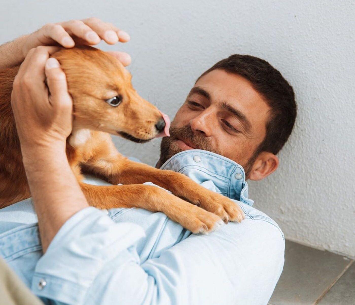 Diogo Amaral Lobo E1586120400796 Diogo Amaral De &Quot;Coração Apertado&Quot; Por Causa Do Seu 'Cãopanheiro'