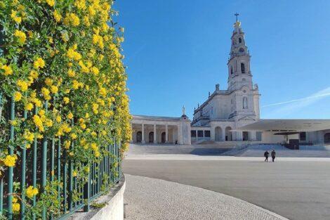 Santuario De Fatima Dois Peregrinos Invadem Recinto Do Santuário De Fátima E Gnr É Obrigada A Intervir