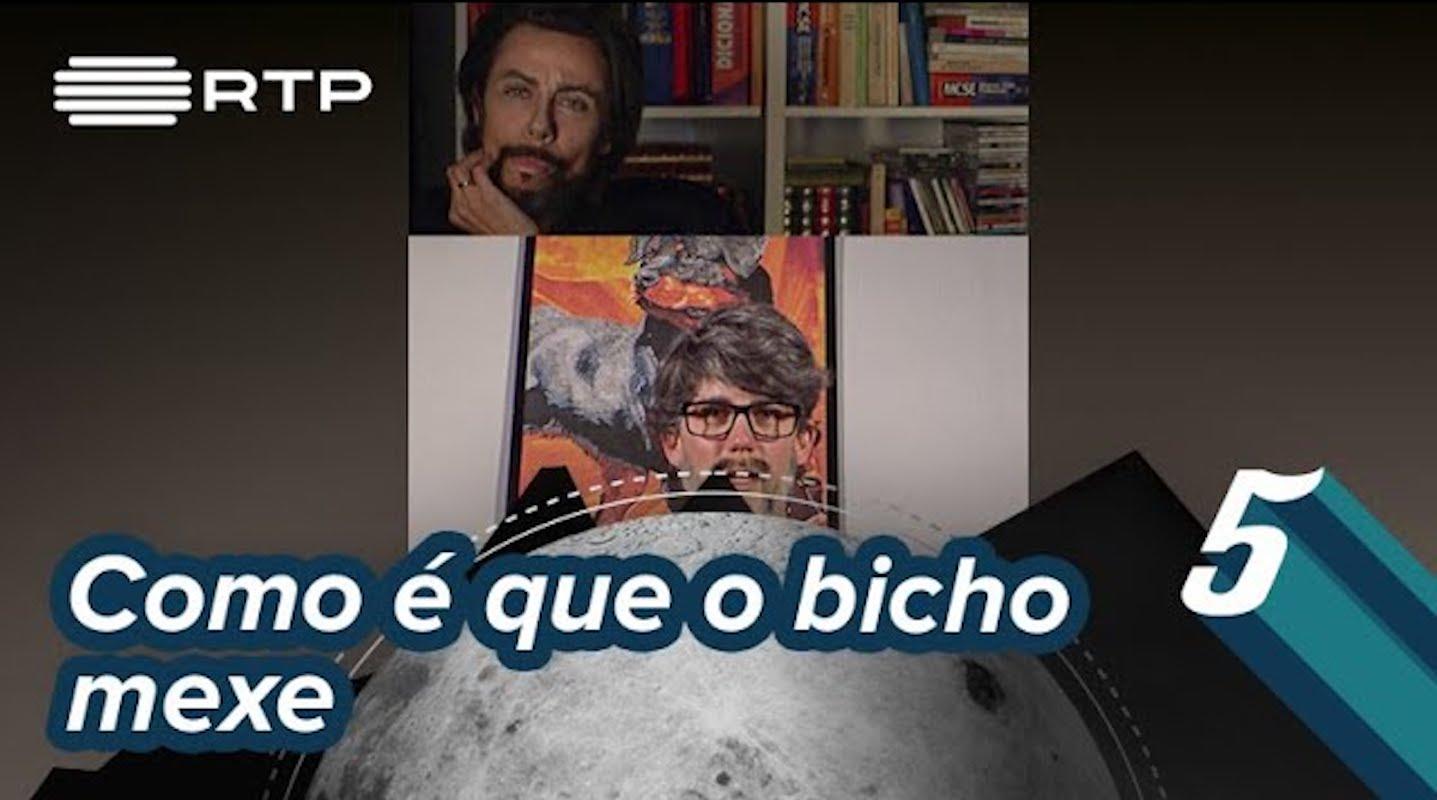Filomena Cautela Direto Bruno Nogueira Filomena Cautela Recria Diretos De Bruno Nogueira