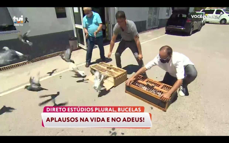Homenagem-Tvi-Pedro-Lima-4