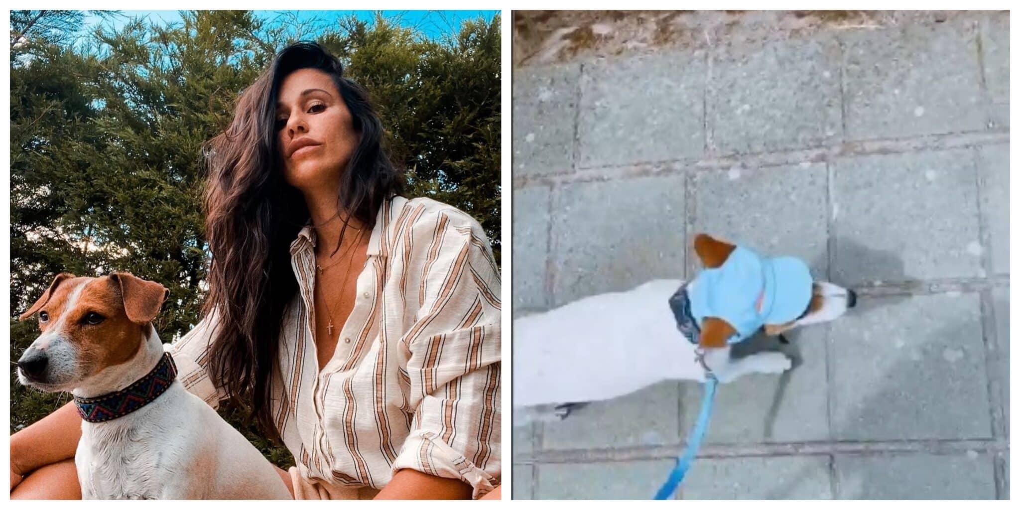 Rita-Pereira-cadela-Heyvi