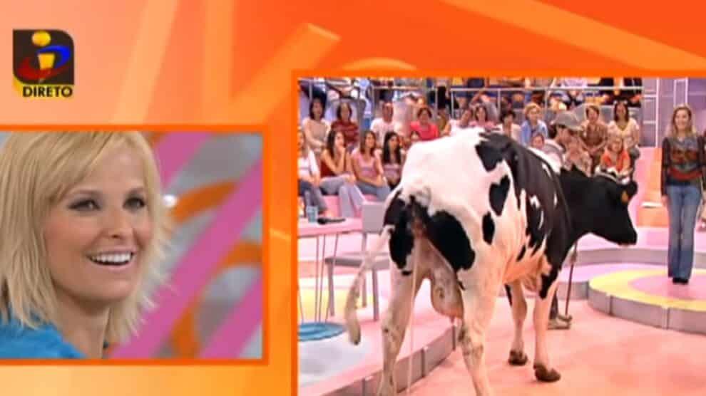 Cristina Ferreira, Vaca, Você Na Tv