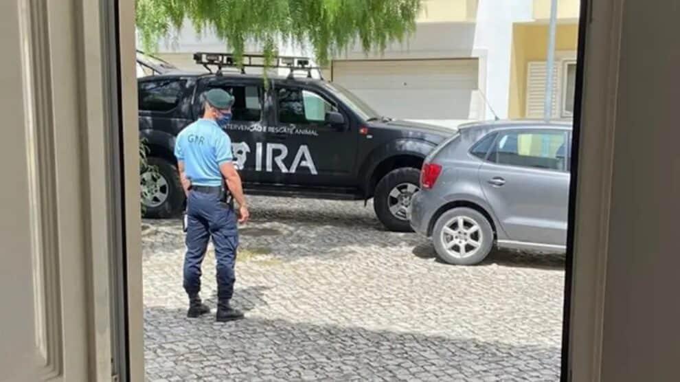 Ira, Casa Dos Horrores